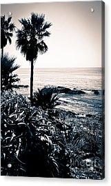 Laguna Beach California Black And White Acrylic Print