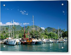 Lahaina Harbor - Maui Acrylic Print by William Waterfall - Printscapes