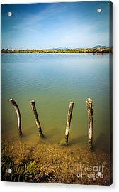 Lake And Poles Acrylic Print by Carlos Caetano