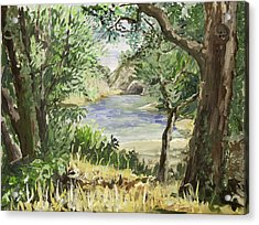 Lake At St Remy Acrylic Print by Gerold Kalter