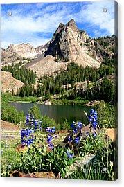Lake Blanche And Sundial Peak Acrylic Print