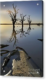 Lake Bonney Barmera Riverland South Australia Acrylic Print