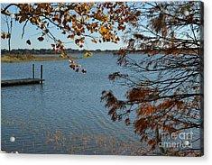 Acrylic Print featuring the photograph Lake Bonny Autumn by Carol  Bradley