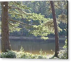 Acrylic Print featuring the photograph Lake Chamberlin by Angi Parks