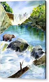 Lake Clementine Falls Bear Acrylic Print