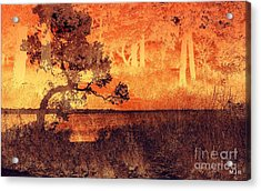 Lake Collage Acrylic Print by Mickey Harkins