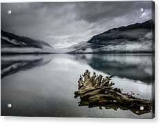 Acrylic Print featuring the photograph Lake Crescent Relic by Dan Mihai