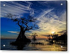 Lake Disston Sunset Acrylic Print
