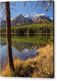 Lake Herbert Reflections Acrylic Print