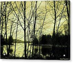 Lake In Winter Acrylic Print by Jane Tripp