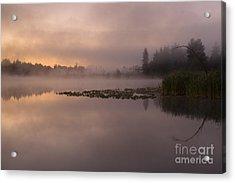 Lake Marsh Acrylic Print