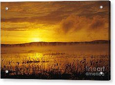 Lake Massabesic - Auburn New Hampshire Usa Acrylic Print by Erin Paul Donovan