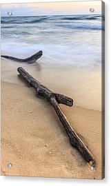 Acrylic Print featuring the photograph Lake Michigan Beach Driftwood by Adam Romanowicz