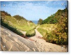lake Michigan Coastal Dune Path Acrylic Print