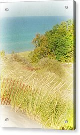 Lake Michigan Dune View Acrylic Print