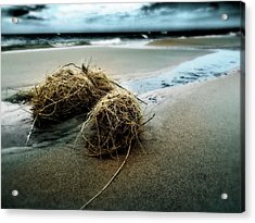 Lake Michigan Tumbleweed Acrylic Print