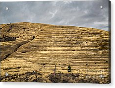 Lake Missoula Acrylic Print