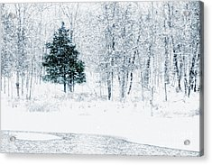 Lake Murray Christmas Tree Landscape Acrylic Print by Tamyra Ayles