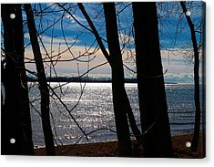 Acrylic Print featuring the photograph Lake Romance by Valentino Visentini