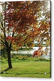 Acrylic Print featuring the photograph Lake Shore Afternoon by Michael Flood
