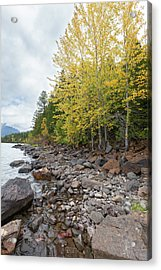 Acrylic Print featuring the photograph Lake Shore by Fran Riley