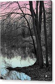 Lake Sunset Acrylic Print by Terry Cork