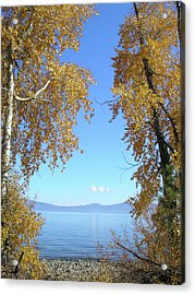 Lake Tahoe Autumn Acrylic Print by Connie Handscomb
