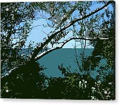 Lake Through The Trees Acrylic Print