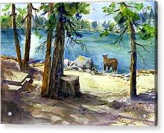 Lake Valley Bear Acrylic Print