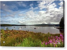 Lake View Acrylic Print by Adrian Evans