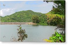 Lake View Acrylic Print