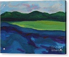 Lake Visit Acrylic Print by Annette M Stevenson