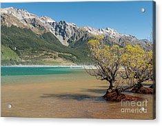 Lake Wakatipu Acrylic Print by Werner Padarin