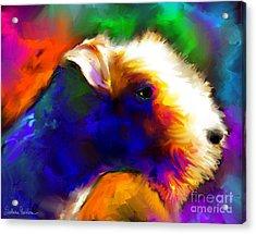 Lakeland Terrier Dog Painting Print Acrylic Print by Svetlana Novikova