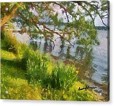 Lakeshore Acrylic Print by Anthony Caruso