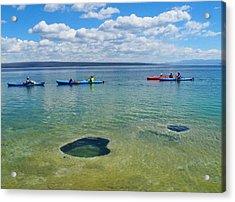 Lakeshore Exploration Acrylic Print by Ryan Scholl