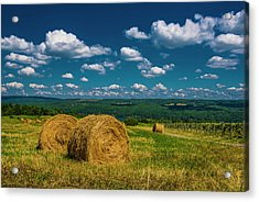 Acrylic Print featuring the photograph Lakeside Hayfield I by Steven Ainsworth