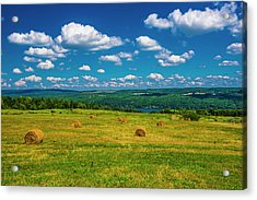 Acrylic Print featuring the photograph Lakeside Hayfield II by Steven Ainsworth