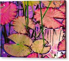 Lakeside I Acrylic Print
