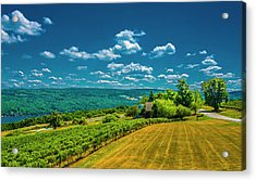 Acrylic Print featuring the photograph Lakeside Vineyard II by Steven Ainsworth