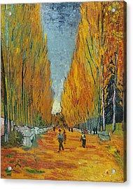 L'allee Des Alyscamps  Arles Acrylic Print by Vincent van Gogh