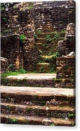 Lamanai Temple Acrylic Print by Thomas R Fletcher