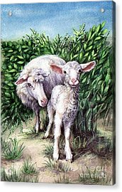 Lamb With His Mother Acrylic Print by Larissa Prince