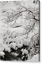 Lambs Canyon In Winter Acrylic Print by Dennis Hammer