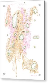 Laminar And Turbulence Acrylic Print by Regina Valluzzi