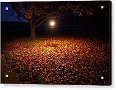 Acrylic Print featuring the photograph Lamp-lit Leaves by Lars Lentz