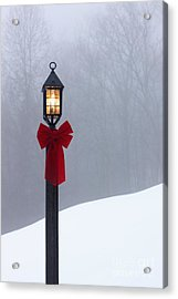Lamppost In Snow Acrylic Print by Will and Deni McIntyre