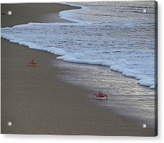 Lamu Island - Crabs Playing At Sunset 4 Acrylic Print by Exploramum Exploramum