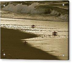 Lamu Island - Crabs Playing At Sunset 5 Acrylic Print