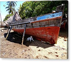 Lamu Island - Dog In The Shade Of Wooden Fishing Dhow Acrylic Print